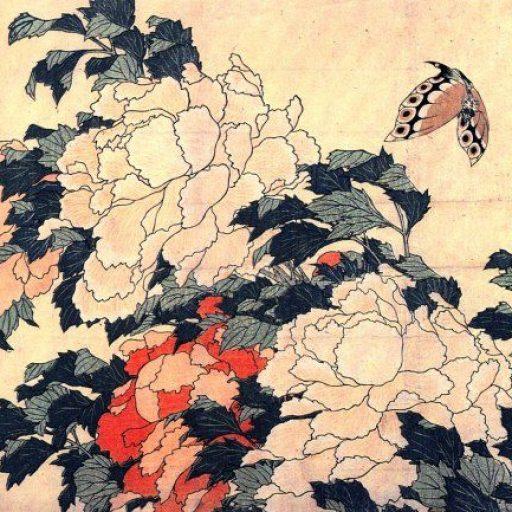 Image une philosophie papillon Soin des sens Hokusai