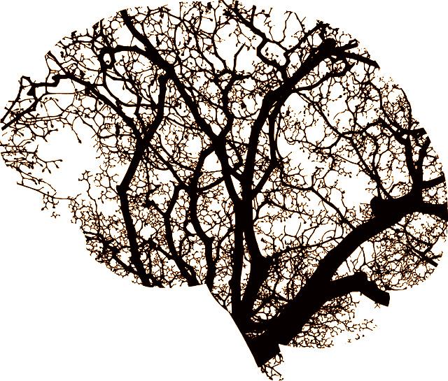cerveau bien etre méditation arbre art therapie soin des sens.png