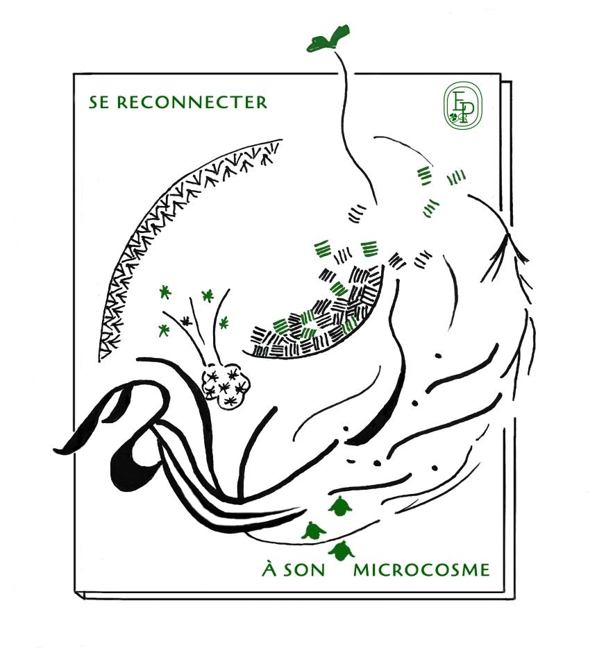 1.Soin des sens se reconnecter Dessin plume croquis contemplatif confinement
