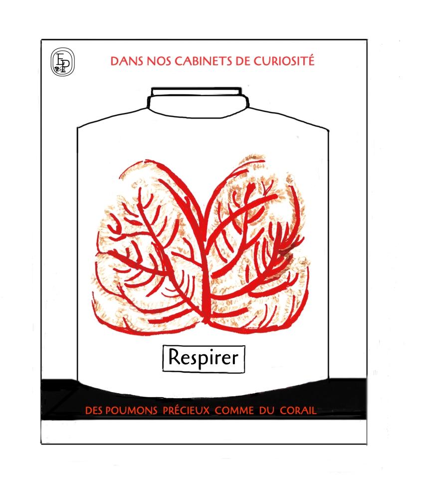 7. Soin des sens Respiration Dessin plume croquis contemplatif confinement